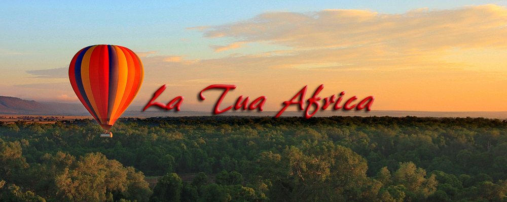 La Tua Africa - Safari in Kenya